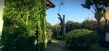 Parte do jardim da mansão de Ronnie de Von; a residência é localizada na zona sul de SP