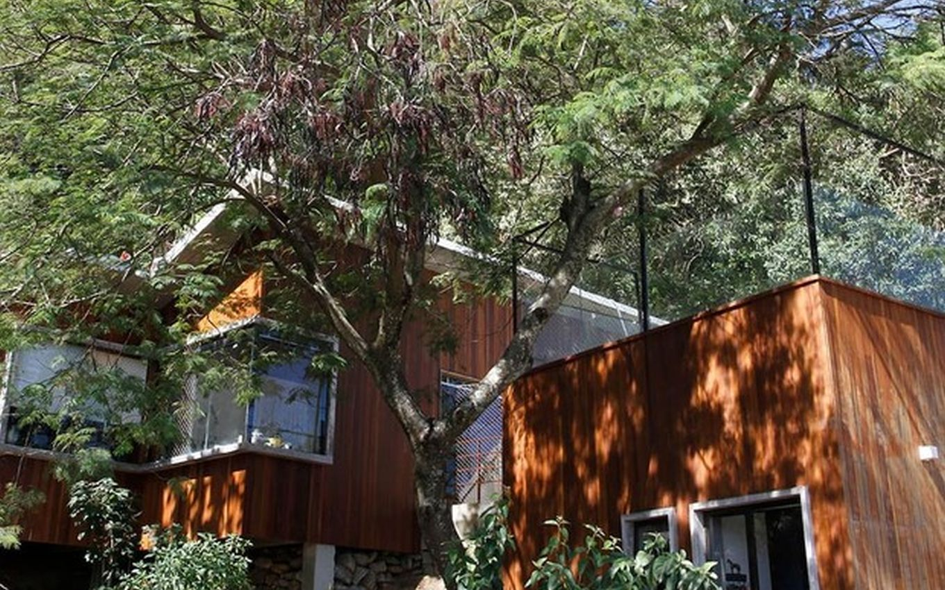 casa arvore caio blat Caio Blat charges R$ 2,000 for a tree house with a sea view; see pictures