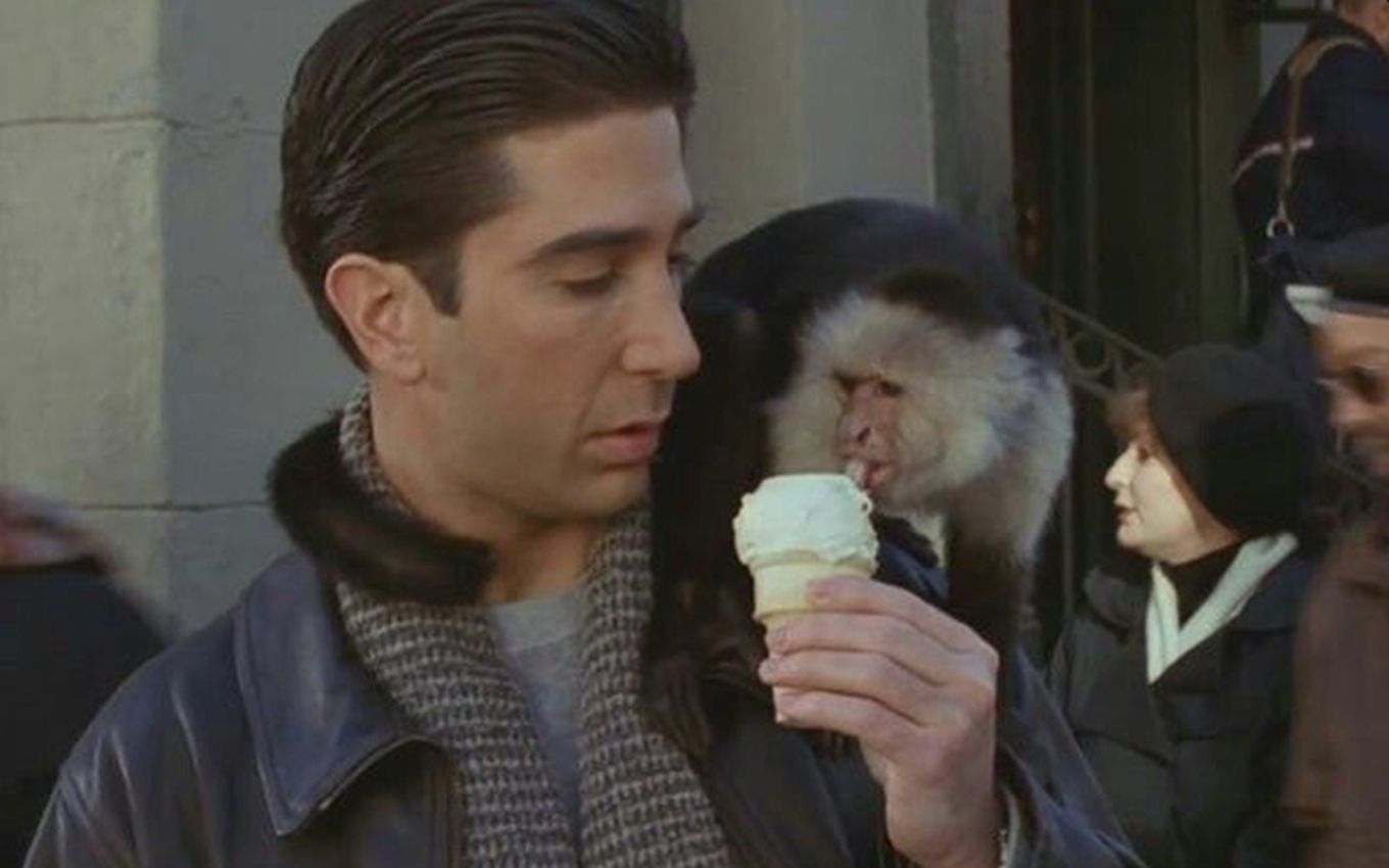 friends david schwimmer marcel From hated monkey to Gaga with Phoebe: 5 must-see scenes from the Friends reunion